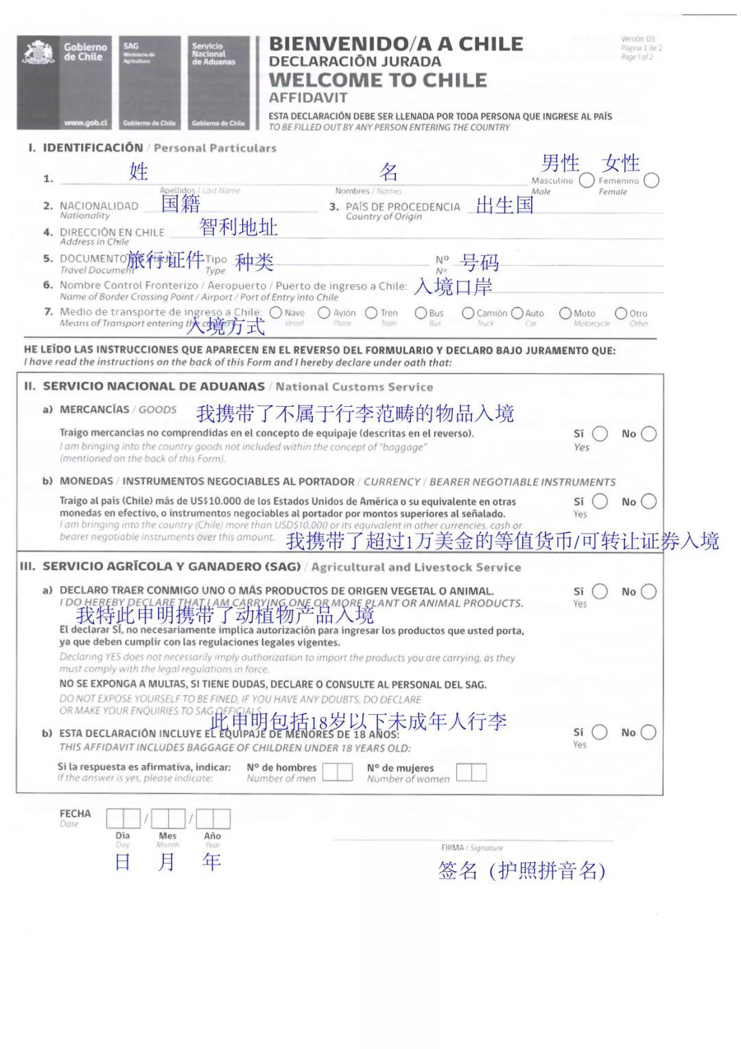 智利入境表格