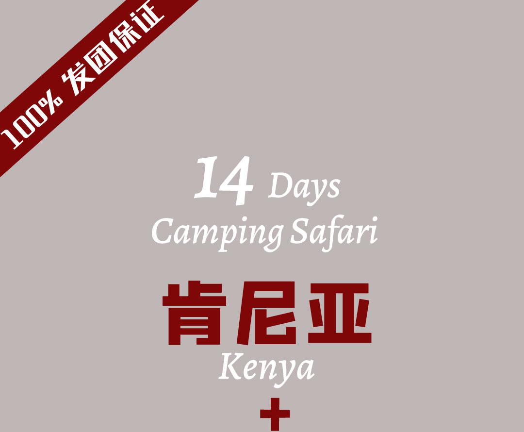 14天肯尼亚和坦桑尼亚游猎旅行
